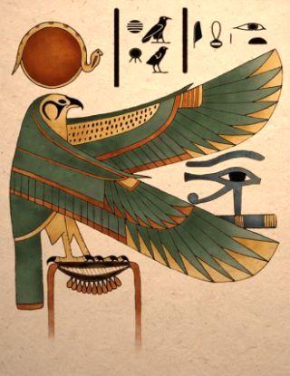 falco-occhio-Horus