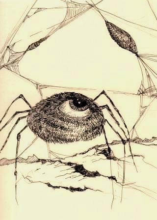 ragno-occhio