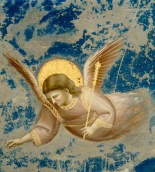Giotto-Angelo-oro