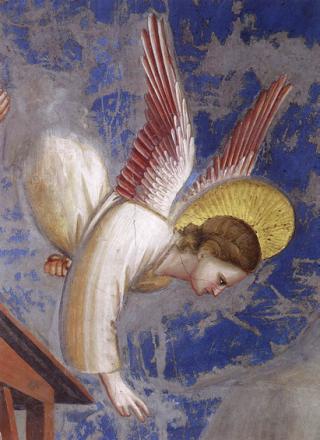Giotto-nascita-Gesù-dettaglio-Angelo