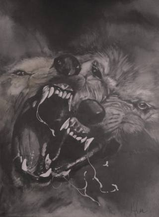 lupi-aggressivi